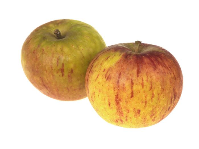 Cox's Apples (x80 pieces)