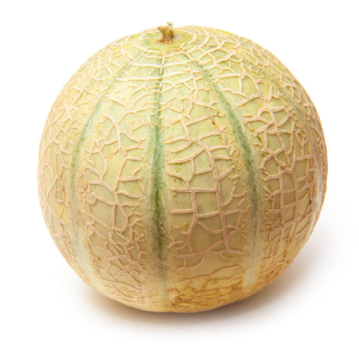 Canteloupe Melons (6 pieces)