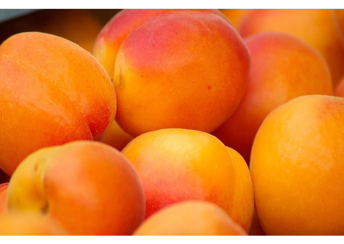 Apricots (5kg Loose)
