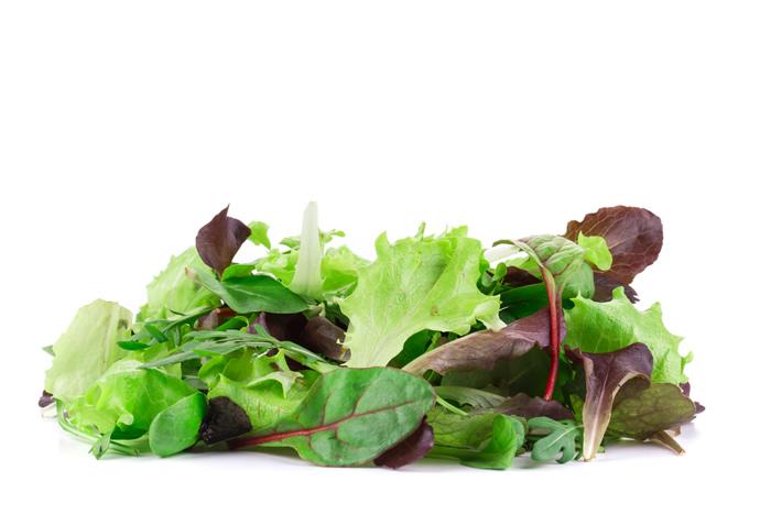 Mixed leaf lettuce (4 packs x125gr)